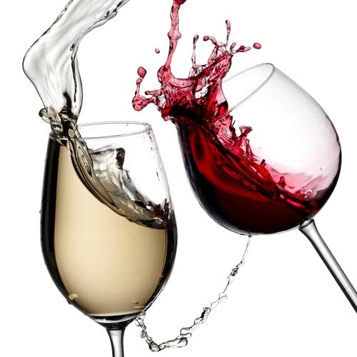 Vins - Vignoble